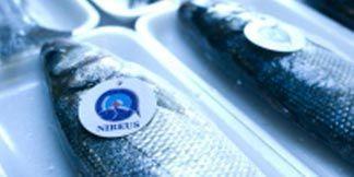 Homepage | NIREUS AQUACULTURE | aquaculture en grèce | Scoop.it