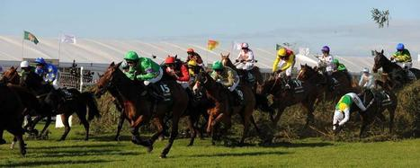 Grand National de Liverpool : stop ou encore ? | Equidia Blogs | Courses hippiques | Scoop.it