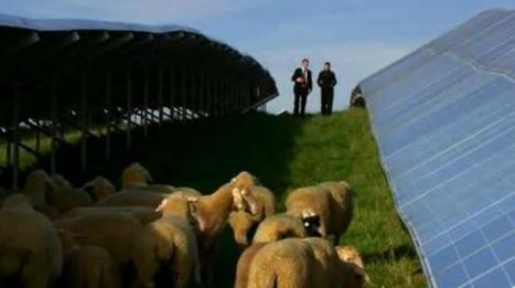 Renewable energy solutions | DuPont | DuPont ASEAN | Scoop.it