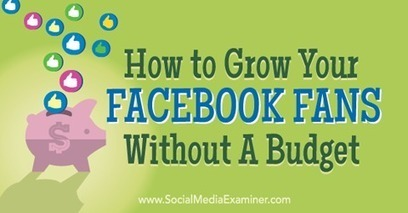 How to Grow Your Facebook Fans Without a Budget | Facebook for Business Marketing | Scoop.it