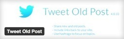 Tweet Old Post - Get More Hits For Your Old Posts And Keep Them Alive Free Download | Wordpress | Scoop.it