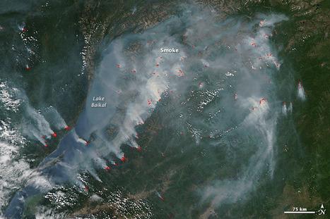 Wildfires | GarryRogers NatCon News | Scoop.it