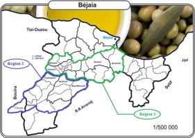 Characterization of monovarietal extra virgin olive oils from the province of Béjaïa (Algeria) - Food Research International | Agriculture et Alimentation méditerranéenne durable | Scoop.it