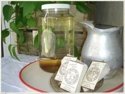 Haven's Natural Brew Tea – Manure Tea For Your Garden | The Succulent Wife | Annie Haven | Haven Brand | Scoop.it