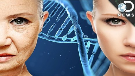 Can This DNA Hack Help You Stay Young Forever? - YouTube | leapmind | Scoop.it