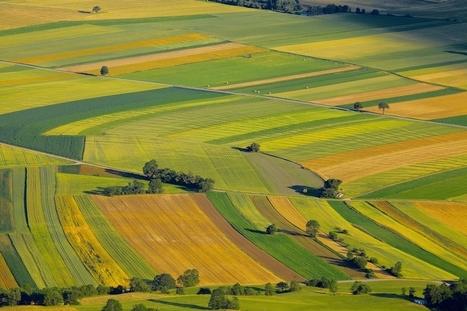 Quelle place pour l'agriculture en France ? - EconomieMatin | Revue de presse : l'agriculture en Aquitaine | Scoop.it