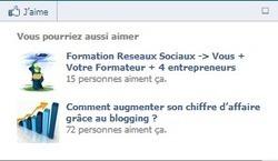 Facebook Recommendations Bar… Celui qui garde vos lecteurs sur votre blog ! | Froggy'Net et le Web 2.0 | Froggy'Net et Facebook pour l'entreprise | Scoop.it