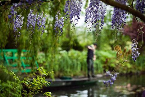 Finding Solitude at Monet's Gardens | Travel | Scoop.it
