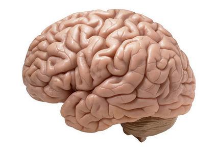 Study Shows Antidepressant Mechanism Of Ketamine - Asian Scientist Magazine | Brain Methods and Others | Scoop.it