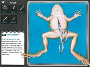 Dissecting Frogs Without the Guts: Frog Dissection Biology App | Academic Matters for Parents | Scoop.it