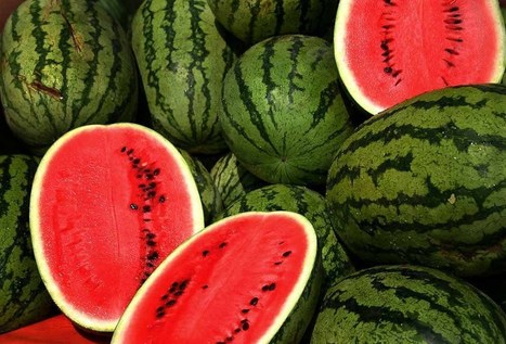 Watermelon Nutrition: Good Health In A Sweet Package - Medical Daily | Shoes | Scoop.it