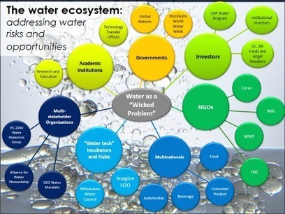 Why water needs Collective Action 2.0   Sustain Our Earth   Scoop.it