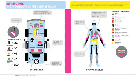 Average Car VS. The Average Human | N. Philly Bike | Scoop.it