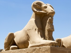 Experience Egypt Vacation Packages All Inclusive | Egypt Tour Info | Scoop.it