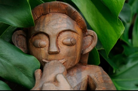 Menehune, Kane-hoa-lani, Lalo-kona, Pua-Nawao, Ku-ma-menehune, Ku-hooia, Ku-iiki | Hawaii Travel | Scoop.it