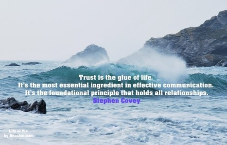 Find Trust after Being a Victim - Change Your Beliefs Now | mindfulnes | Scoop.it