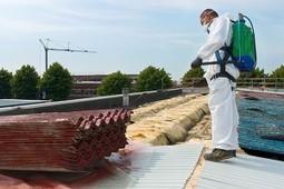 Asbestos Surveys: What You Need to Know   PTL Hygiene   Asbestos Surveys   Scoop.it