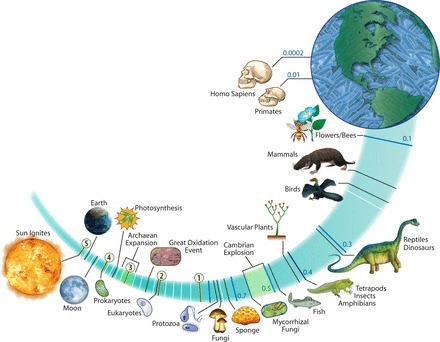 Toward a Predictive Understanding of Earth's Microbiomes to Address 21st Century Challenges | Host microbe interactions | Scoop.it