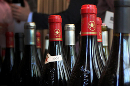 TENDANCES VINS 2014 | Les conseillers du vin / Nick Hamilton | Marketing du vin | Scoop.it