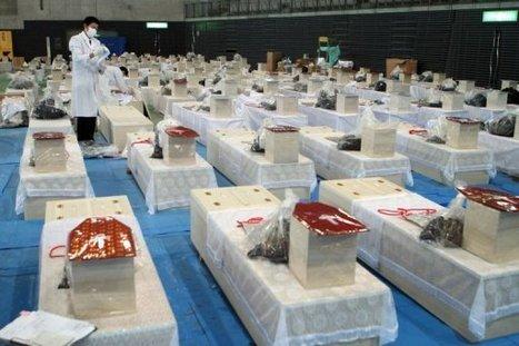 Japon: séisme et tsunami ont fait plus de 10.000 morts confirmés | France 24 | Japon : séisme, tsunami & conséquences | Scoop.it