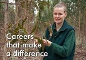 Search all resources | FWPA Forest Learning | Food and Fibre Production in Australia | Scoop.it