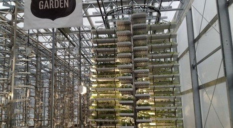 Check Out The World's Largest Indoor Vertical Farm Capable Of Producing 2 Million Pounds Of Food | leapmind | Scoop.it