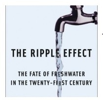 The Story of The Century: A Conversation with Alex Prud'homme about The Ripple Effect | Sustain Our Earth | Scoop.it