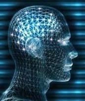 Definición de Neurociencia » Concepto en Definición ABC | Salud Publica | Scoop.it