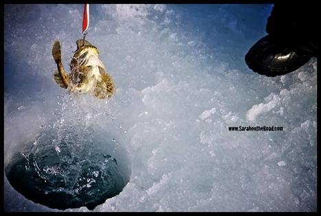Pangnirtung Hamlet Day | The Arctic - Nunavut | Scoop.it