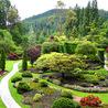 1 World Knowledge: gardening