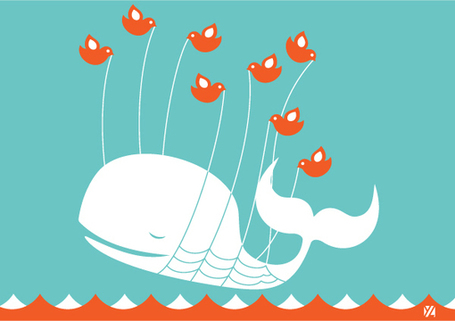 On Election Day 2012, Twitter Kills The Great White Fail Whale | Social Media Epic | Scoop.it