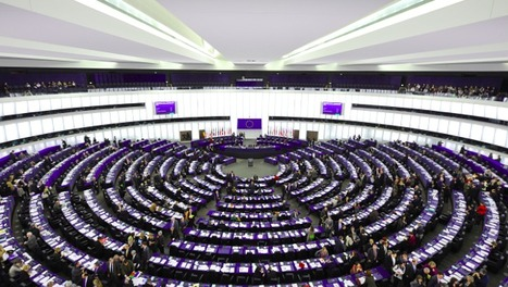Electoral Lists ahead of the Elections to the European Parliament from a Gender Perspective | Olimpia Bineschi | Scoop.it