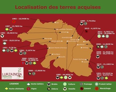 L'action en or   BABinfo Pays Basque   Scoop.it