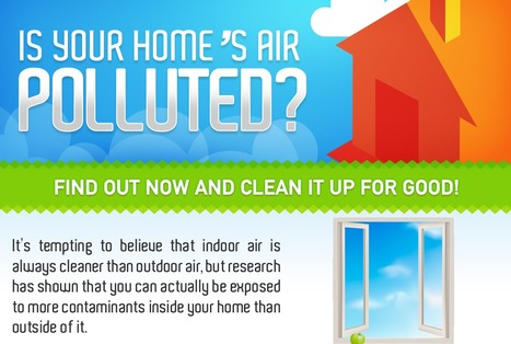 How to Get Rid of the Most Common Indoor Air Pollutants | Residential Spaces | Scoop.it