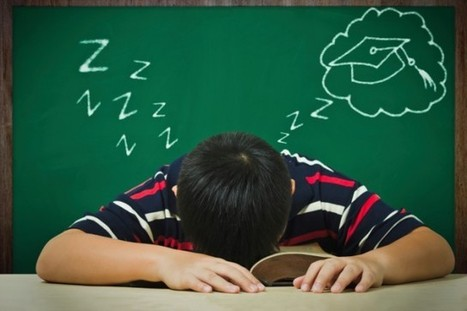 Can You Learn While You Sleep? | Nektario's repository | Scoop.it