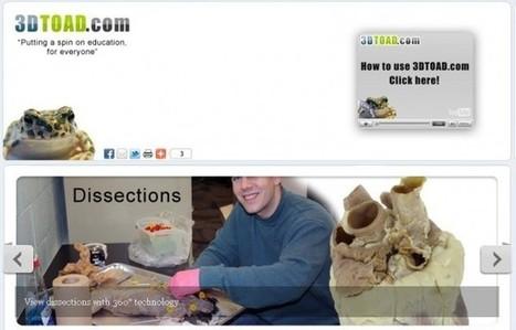 3D Toad, imágenes didácticas en tres dimensiones.- | FOTOTECA INFANTIL | Scoop.it