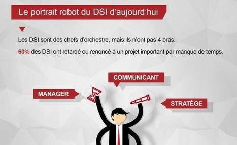 Infographie : le quotidien du DSI | AtoutDSI, pour les DSI qui se transforment | CultureRP | Scoop.it