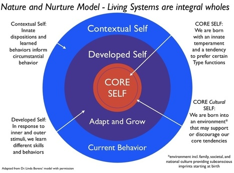 Type and Culture Model — Building the Life You Want | MBTI | Scoop.it