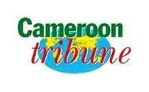 Le plan de sécurité du Golfe de Guinée se construit - Cameroon Tribune | droit de la mer | Scoop.it