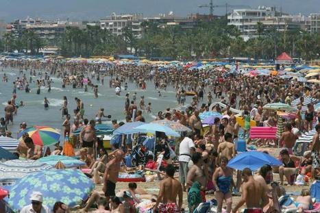 Las conchas en las playas mediterráneas han disminuido un 60 ... - ecodiario | Turismo de Sol y Playa Málaga | Scoop.it