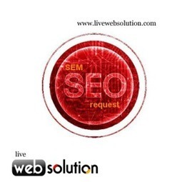 Importance Of Link Building Services, Orange County | Live Web Solution | Scoop.it