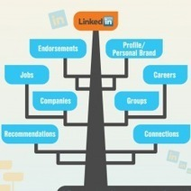The Ecosystem of LinkedIn Infographic | LinkedIn for Financial Advisors | Scoop.it