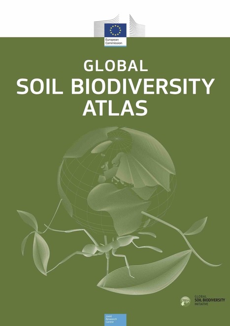Publication du premier atlas mondial de la biodiversité des sols - Médiaterre | Biodiversité | Scoop.it