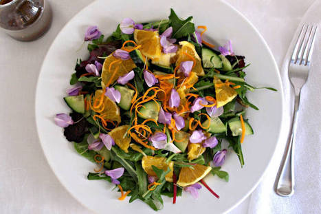 6 Easy Breezy Meatless Summer Salads - One Green Planet | Dinner Recipes | Scoop.it
