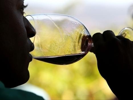 Damaging insect found in Colorado's largest #wine region | Vitabella Wine Daily Gossip | Scoop.it