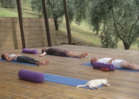 Op Zoek Naar De Perfecte Yoga Vakantie Waar Genieten En Ontspannen Centraal Staan? - Revealing Vajra | The Benefits Of Practicing Yoga | Scoop.it
