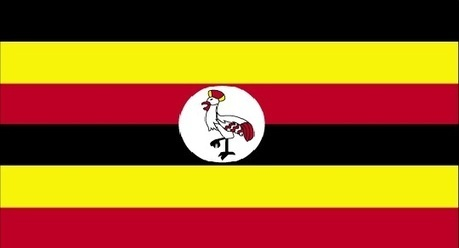 Gay Ugandans cautiously welcome President Museveni's decision to veto anti-gay law   notstraight.com   Scoop.it