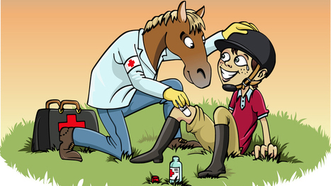 Beginners Guide to Equine First Aid & Horse Health Care | Farming and the Countryside | Scoop.it