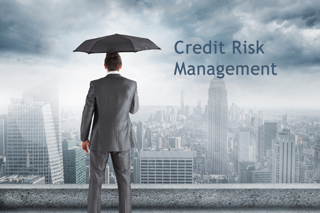 La Certificazione Credit Risk Management | Fidélitas | Scoop.it