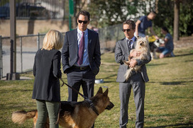 Watch Full Episodes Online Free - Click TV: Watch Franklin & Bash Season 3 Episode 5 By The Numbers Online - Franklin & Bash S03E05 Putlocker Streaming | Free Online Watch TV Shows | Scoop.it